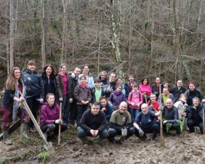 ¡Anímate a colaborar en la restauración de los bosques vascos!