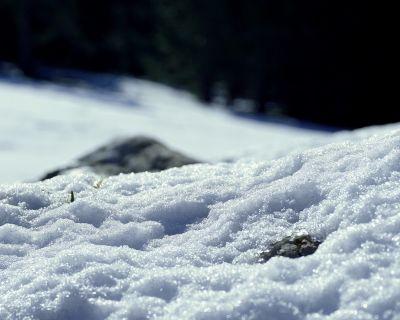 El calentamiento global deja al descubierto cientos de cuerpos sepultados bajo el hielo