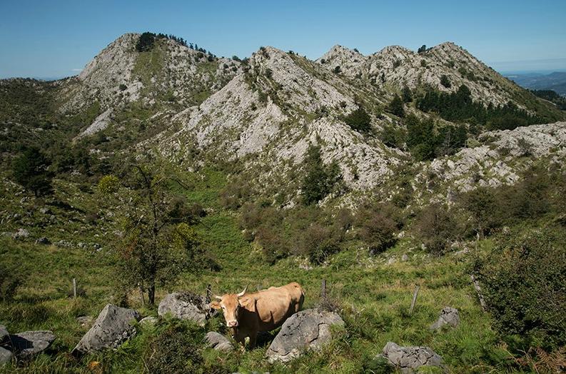 Urtemondo es uno de los picos menos conocidos de la Sierra de Aramotz.