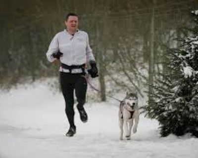 Canicross, correr con tu perro