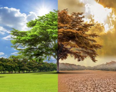 El cambio climático, una realidad cada vez más tangible